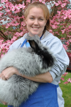 Katie and Bungalow Farm's Odessa Reg. 2004 g./yr. ©Bungalow Farm Angora