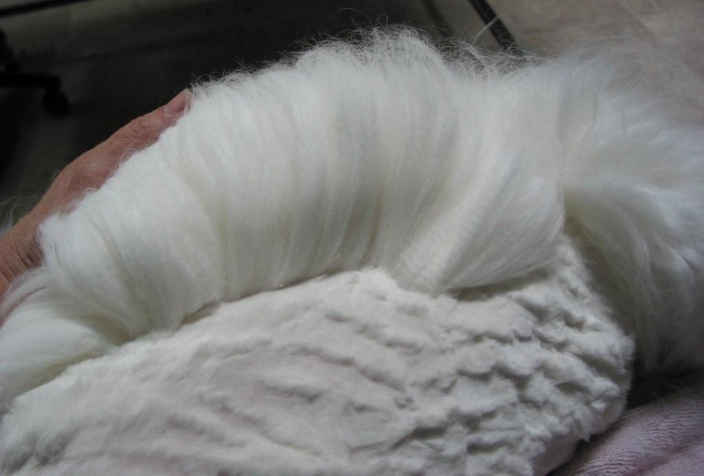 Angora Wool Related Keywords & Suggestions - Angora Wool Long Tail ...