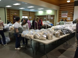 Wool Show and Sale